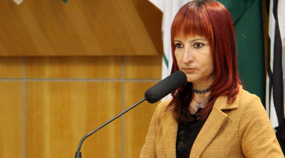 Sônia solicita melhorias para bairros das regiões leste e norte de Jacareí