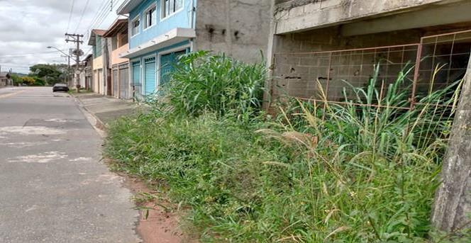 Rodrigo Salomon indica capina e limpeza em viela no Jardim Maria Amélia
