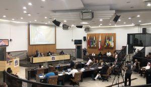 Vereadores aprovam dois projetos relacionados à causa animal em Jacareí