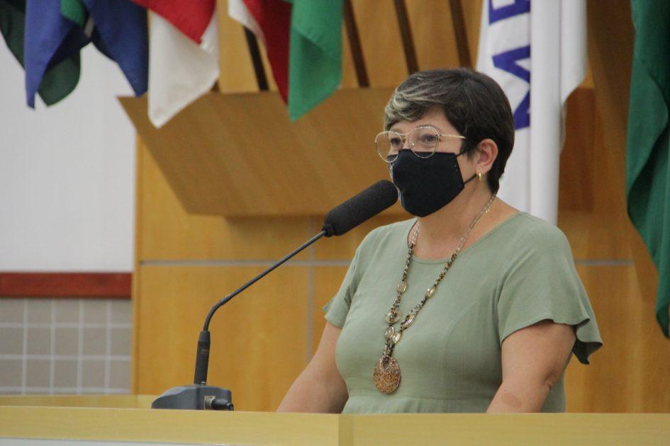 Maria Amélia indica manutenção ao SAAE em ruas do Terras de São João e Santa Cruz dos Lázaros