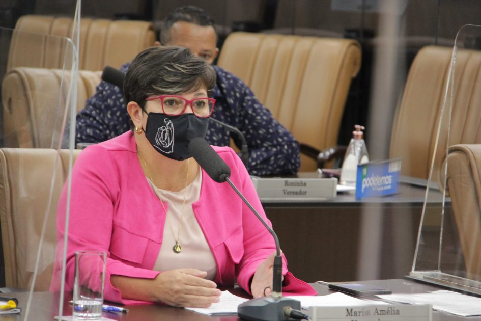 Maria Amélia pede melhorias para o bairro Santa Maria