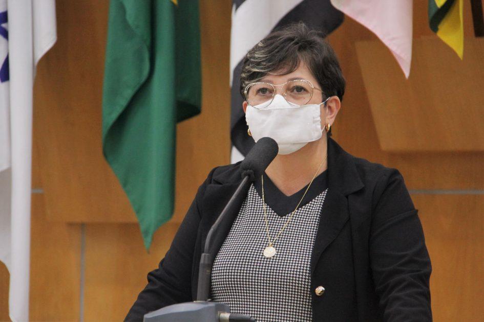 Maria Amélia pede manutenção em ruas do Sto. Antônio da Boa Vista e Vila Zezé