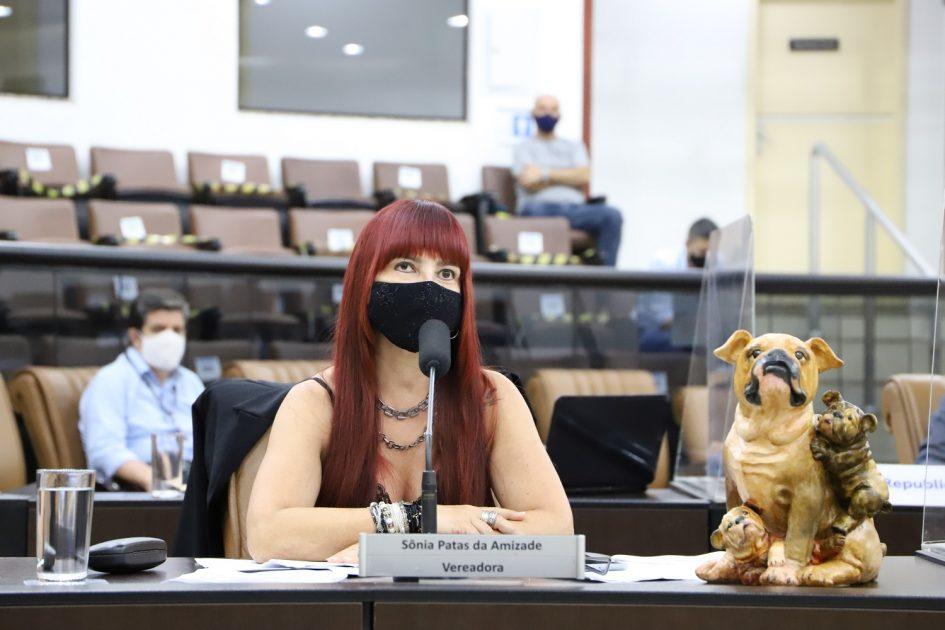 Sônia pede serviços de manutenção em avenidas do Centro de Jacareí